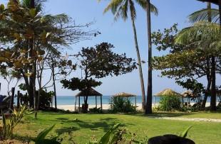 Ngwe Saung-Palm Beach2